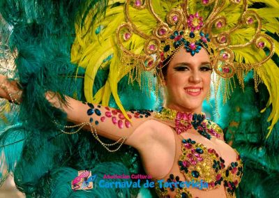 Carnavalnoche0009