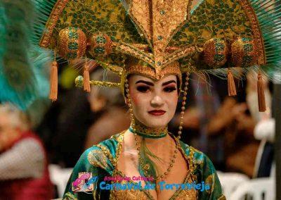 Carnavalnoche0529