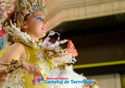 Carnavalnoche0598