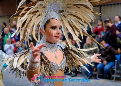 Carnavaltarde0215