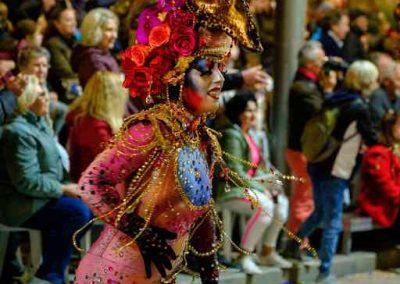 Carnavaltarde0429